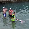 _0010061_DL_Harbour_Swim_2016