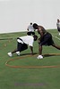 Defensive line guys Marcus Smith(inside the hoop) and Ola Dagunduro, participate in a drill of their own.