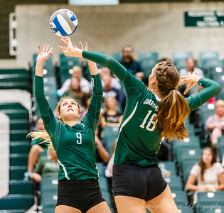 Dartmouth vs UConn Volleyball