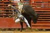 20120908_Davie Bull Riding-15