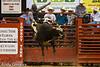20120908_Davie Bull Riding-13