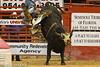 20120908_Davie Bull Riding-7