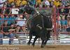 20130621_Davie Pro Rodeo-3