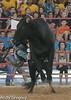 20130621_Davie Pro Rodeo-4
