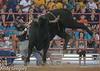20130621_Davie Pro Rodeo-7