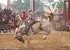 20130622_Davie Pro Rodeo-14