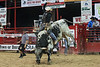 20120623_Davie Pro Rodeo-18