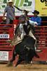 20120623_Davie Pro Rodeo-19