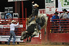 20120623_Davie Pro Rodeo-15