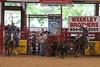 20120622_Davie Pro Rodeo-8