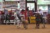 20120622_Davie Pro Rodeo-14