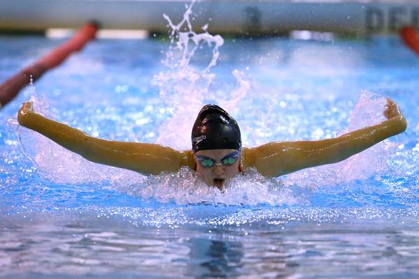 Western High School's Grace Lupoi swimming against Carroll High School Thursday,  Dec. 4, 2014.<br /> Tim Bath | Kokomo Tribune