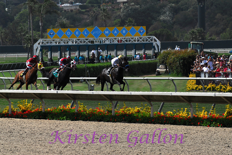The horses are out of the gate and coming around the first curve.  I think this is the second race of the day.