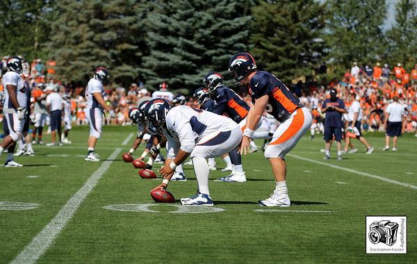 Denver Broncos Credentials