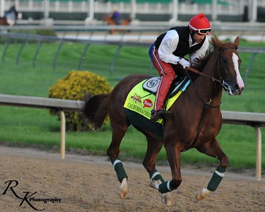 California Chrome-1