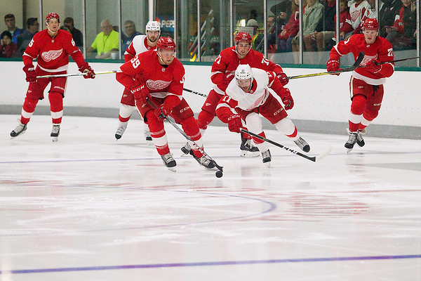 RED AND WHITE GAME
