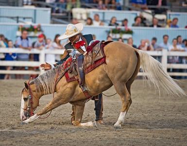 Devon Horse Show 2009