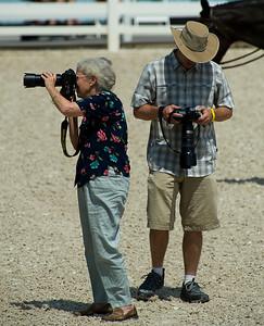 Devon Horse Show 2010