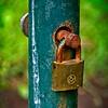 SRf2107_6204_Lock