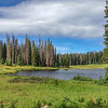 Lake Elmo