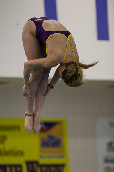 UWSP Diving  <br /> January 18, 2013