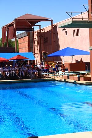 2013 Jr. PanAm Diving Championships U.S.A.