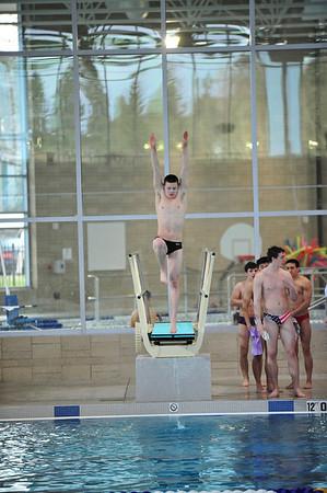 Aaron dives