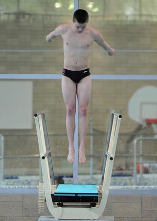 Diving 2014