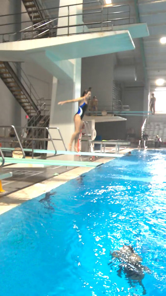 WAC 2015 Diving