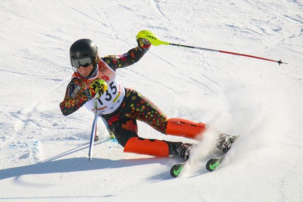 D2 Ski State