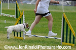 Dog Agility - Freehold - 5/30/09 JoJo :