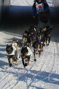 4-time Iditarod Champion Martin Buser's Team (Bib #13)