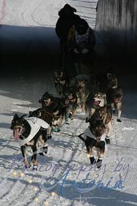 Four time Iditarod Champion - Jeff King's Team (Bib #11)