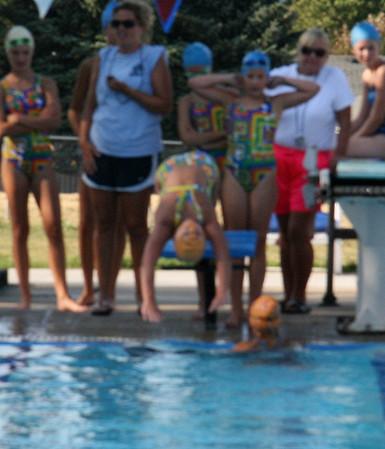 Dolphin swim meet