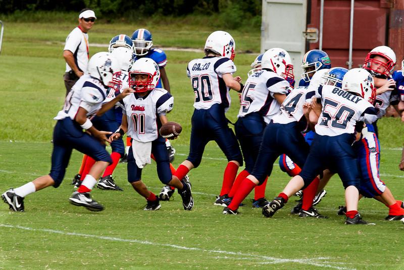 IMAGE: http://www.perrydevenecia.com/Sports/DoverPatriotsvsLakelandGators/IMG3212/985432450_aQ6Ad-L.jpg
