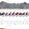 Walgreens Orlando Dragon Boat Festival 2016