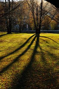 Lindeijer_2012-10-27_151149