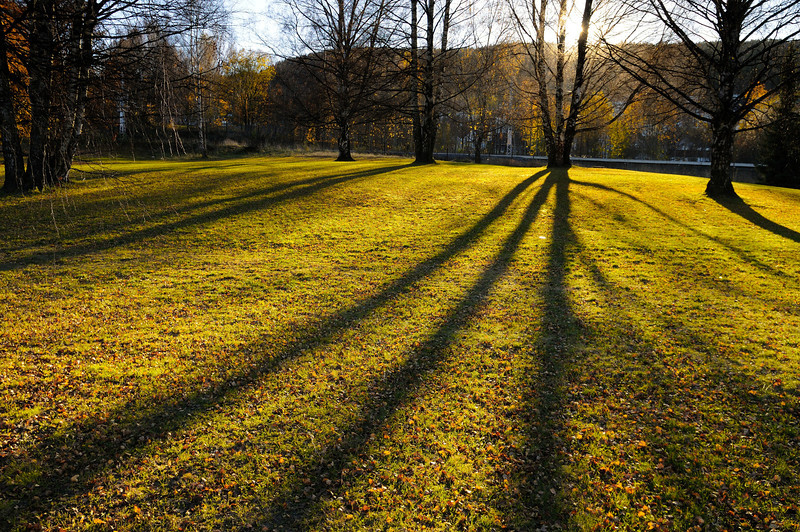 Lindeijer_2012-10-27_151215