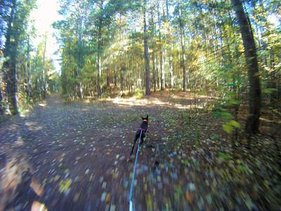Bikejoring Oct 8, 2012
