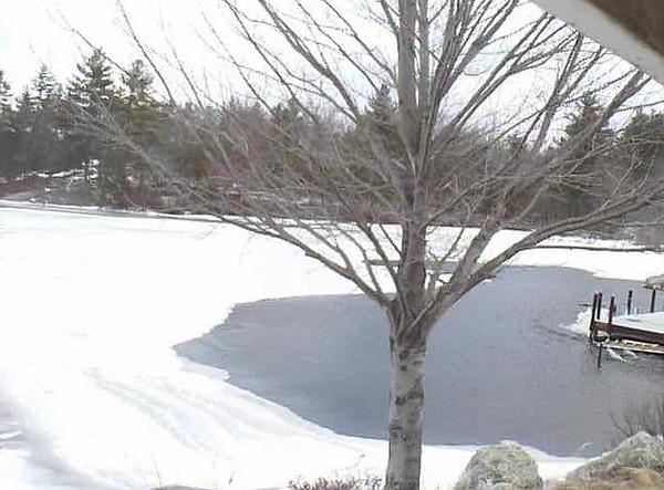 Dubes Pond 2011