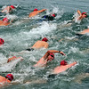 _0015186_DL_Harbour_Swim_2017