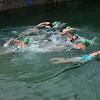 _0015312_DL_Harbour_Swim_2017