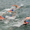 _0015209_DL_Harbour_Swim_2017