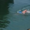 _0015266_DL_Harbour_Swim_2017