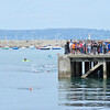 _0015264_DL_Harbour_Swim_2017