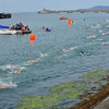 _0015278_DL_Harbour_Swim_2017