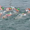_0015319_DL_Harbour_Swim_2017