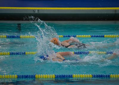 Dynamos Swim 2016-17