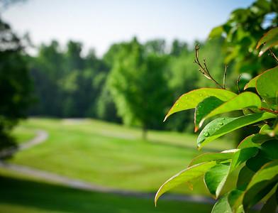 ECS Golf Classic-14