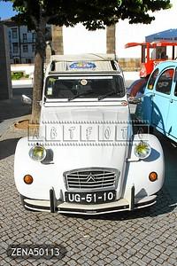 ZENA50113